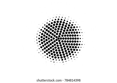 Black and white dotted gradient. Contrast half tone vector background. Spotted dotted halftone. Monochrome retro texture. Black ink dot on transparent backdrop. Pop art dotwork. Abstract backdrop