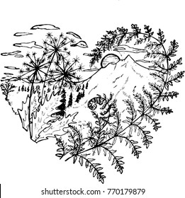 Black and white drawing of the heart, in which dandelions, fern, sunset, mountains, clouds, trees.