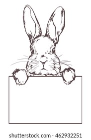 black and white drawing of a rabbit. sketch Bunny, banner