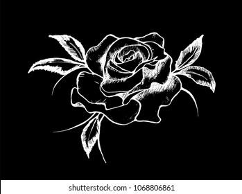 Contour Line Drawing Rose : Rose sketch images stock photos vectors shutterstock