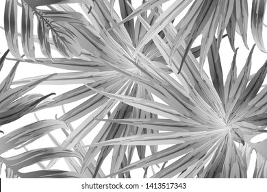 Black white exotic pattern. Monstera leaves and hibiscus flowers in summer print.  Saturated large floral swimwear print. Horizontal california natural texture design. Bonny spring botanical design.