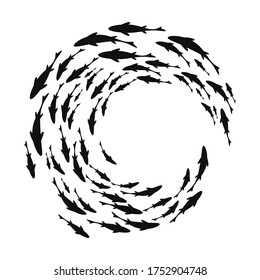 black and white fish in circle formation