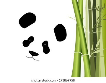 black and white giant panda bear and bamboo on white background
