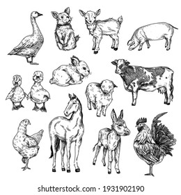 Black and white hand drawn farm animals (goose, pig, cow, rabbit, donkey, chicken, cock, two ducklings) on white background.