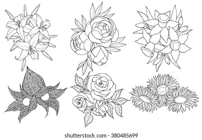 Black and white hand drawn set of different flowers. Coloring book page for adult and children. Love bohemia concept for wedding invitation, card, ticket, branding, boutique logo, label, emblem.