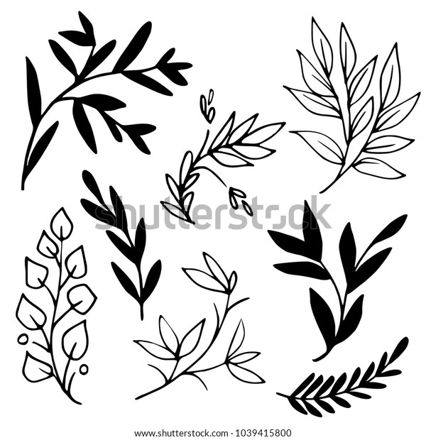 Black and white hand drawn tree branches. Decorative plants illustration. Graphic vector image.