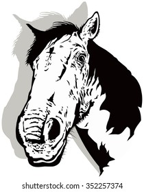 Black and white horse vector with shadow.