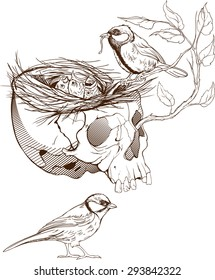 black and white illustration of birds making a nest in animal skull