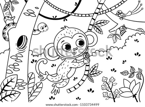 ジャングルでかわいい猿の白黒のイラスト ベクターイラスト のベクター画像素材 ロイヤリティフリー