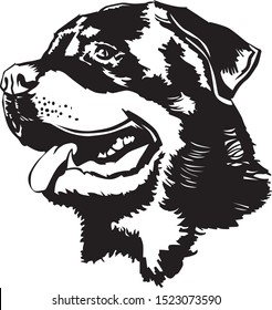 black and white illustration of the head of a Rottweiler