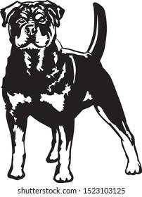 Black and white illustration of a rottweiler alert