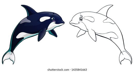 The black and white killer whale jumps colorful and contour line on white background, isolated. Cartoon 3d vector illustration of sea animal