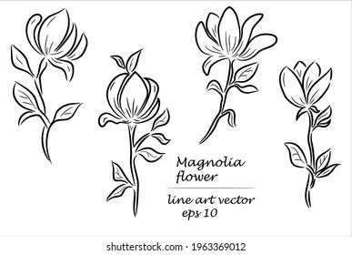 Black and white line art sketch illustration of magnolia flowers on a white background.
