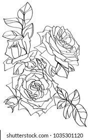 Rose outline images stock photos vectors shutterstock black and white line illustration of rose flowers on a white background mightylinksfo