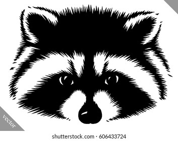 black and white linear paint drawn raccoon vector illustration
