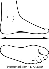 Black and white outline of the foot. Vector