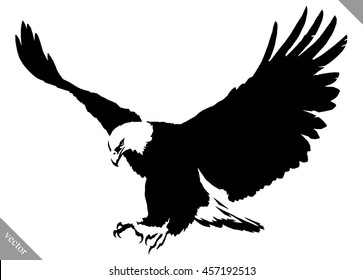 Eagle Drawing Images, Stock Photos & Vectors | Shutterstock