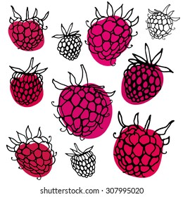 Black and white pattern with raspberry. Hand drawn ink outline raspberry with color spots.