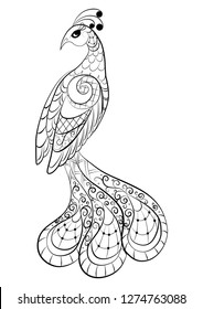 Black and white picture for coloring. The magical bird, the Firebird