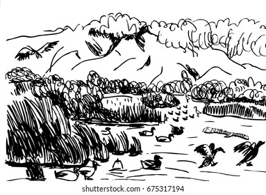 Black and white picture of the reserve landscape with birds
