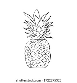Black and white pineapple isolated on white background. Vector illustration. Doodle style. Decorative retro style pineapple product for restaurant menu, market label, coloring book.