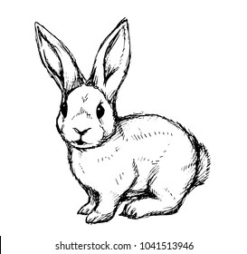 Black and white rabbit. Hand draw, vector illustration for a card or poster.