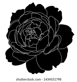 Black and white rose flower. Realistic vector illustration of open rose bud. Decorative element for tattoo, greeting card, wedding invitation. Hand drawn sketch