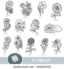 Black and white set of flowers, collection of vector nature items with names in English. Cartoon visual dictionary for children about plants