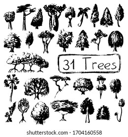 Black and white set silhouettes of tree. Summer tree vector illustration on white background. Black ink tree stamp. Firtree, mangrove, palm and leafy tree. Handdrawn botanical sketch. Earth day poster
