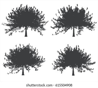 Black and white single tree shapes set. Vector illustration.