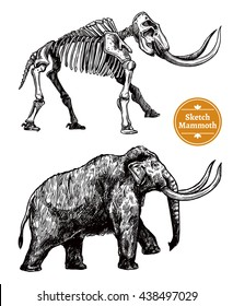 Black and white sketch hand drawn mammoth and its skeleton on white background isolated vector illustration