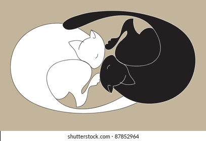 Black and white sleeping cats form sign yin - yang