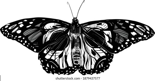 black and white tattoo butterfly with skull camouflage