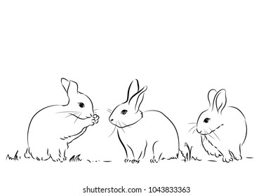 Black and White Three Rabbit in Drawing Style for Easter Concept