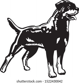 black and white vector drawing of a beautiful rottweiler