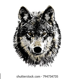 Black and white vector drawing of a wild wolf head.