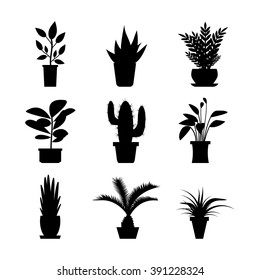 Black and white vector house plants and flowers in pots icons. Silhouette isolated on white background.