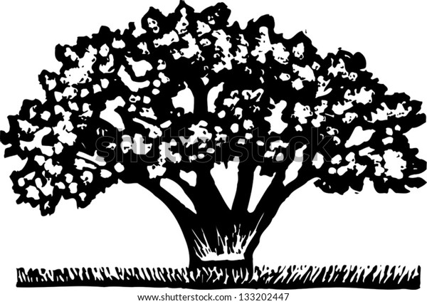Black and white vector illustration of blooming magnolia tree