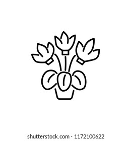 Black & white vector illustration of cyclamen with flowers & leaves in pot. Line icon of decorative flowering home plant in container. Isolated object on white background.