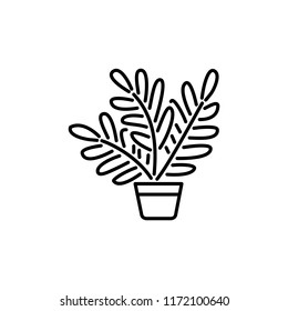 Black & white vector illustration of fern with leaves in pot. Decorative home plant in container. Line icon of indoor green foliage plant for conservatory & terrarium. Isolated object on white backgro
