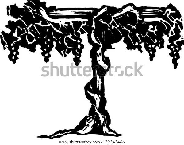 Black and white vector illustration of grapevine