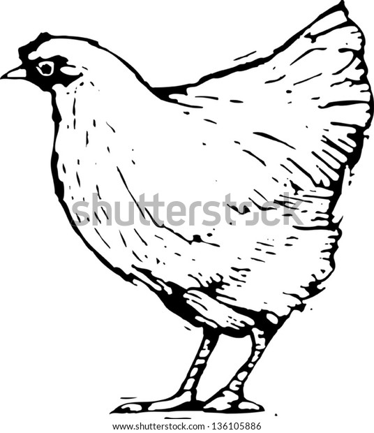 Black and white vector illustration of a hen