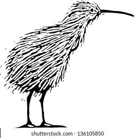 Black and white vector illustration of a kiwi bird
