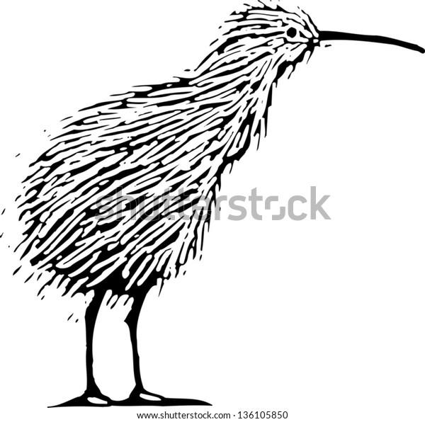 Black and white vector illustration of a kiwi bird