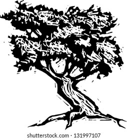 Black and white vector illustration of an oak