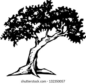 Black and white vector illustration of an oak tree