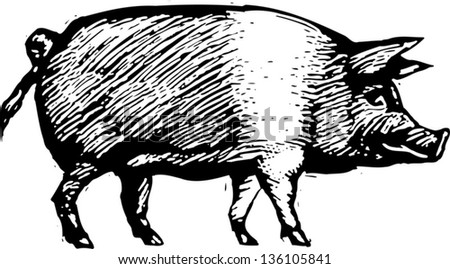 Black and white vector illustration of a pig