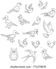 Black and white vector set of birds in cartoon style