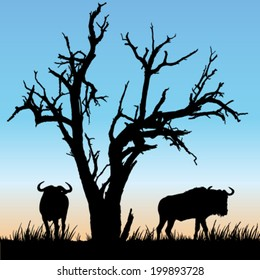 Black and white vector silhouettes of beautiful African scenery with a dead tree and two wildebeest
