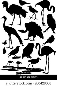 Black and white vector silhouettes of a variety of African birds